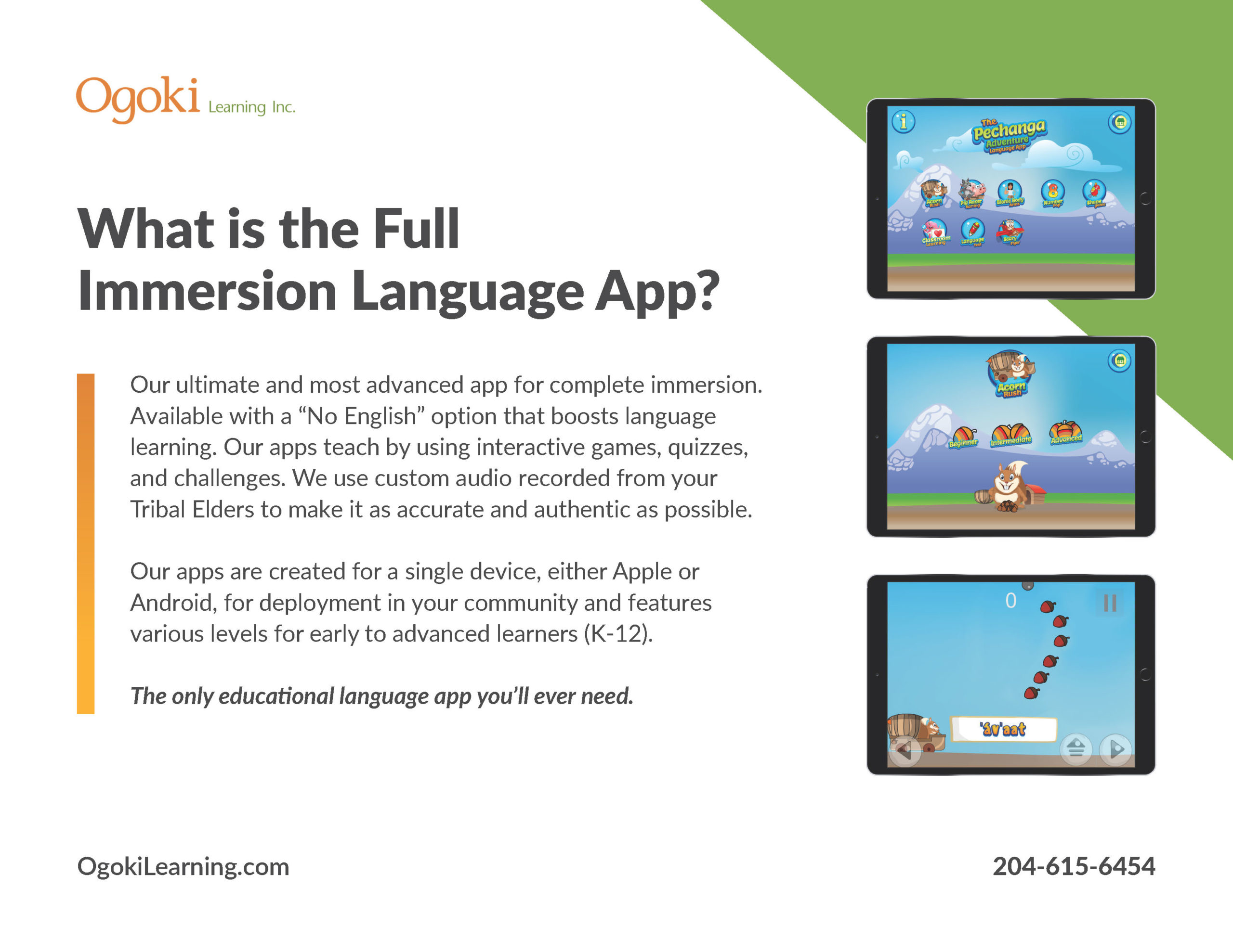 What is the Full Immersion Language App?